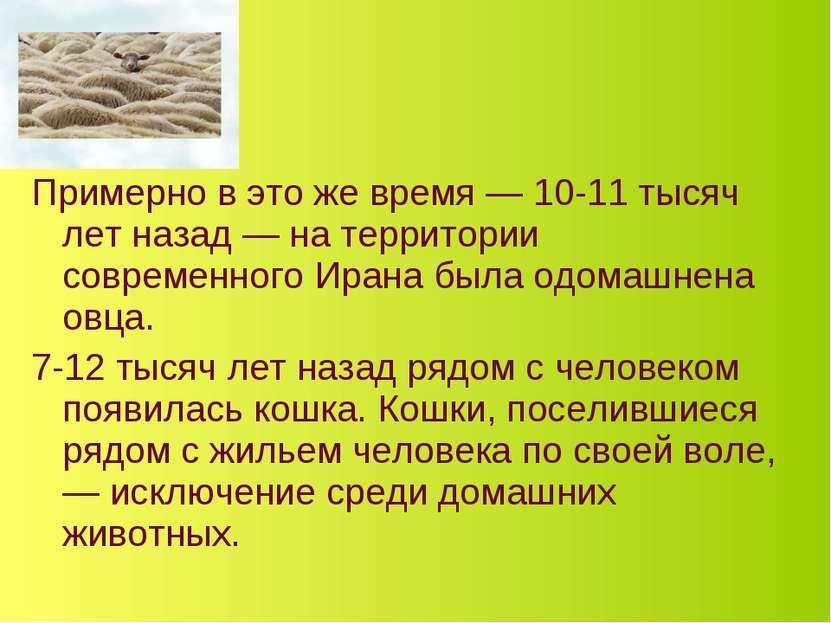 Примерно в это же время — 10-11 тысяч лет назад — на территории современного ...