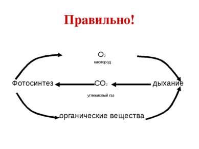 Правильно! О2 кислород Фотосинтез СО2 дыхание углекислый газ органические вещ...