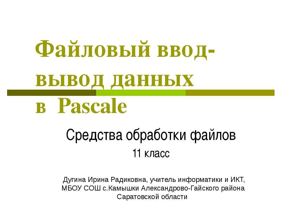 Файловый ввод-вывод данных в Pascalе Средства обработки файлов 11 класс Дугин...
