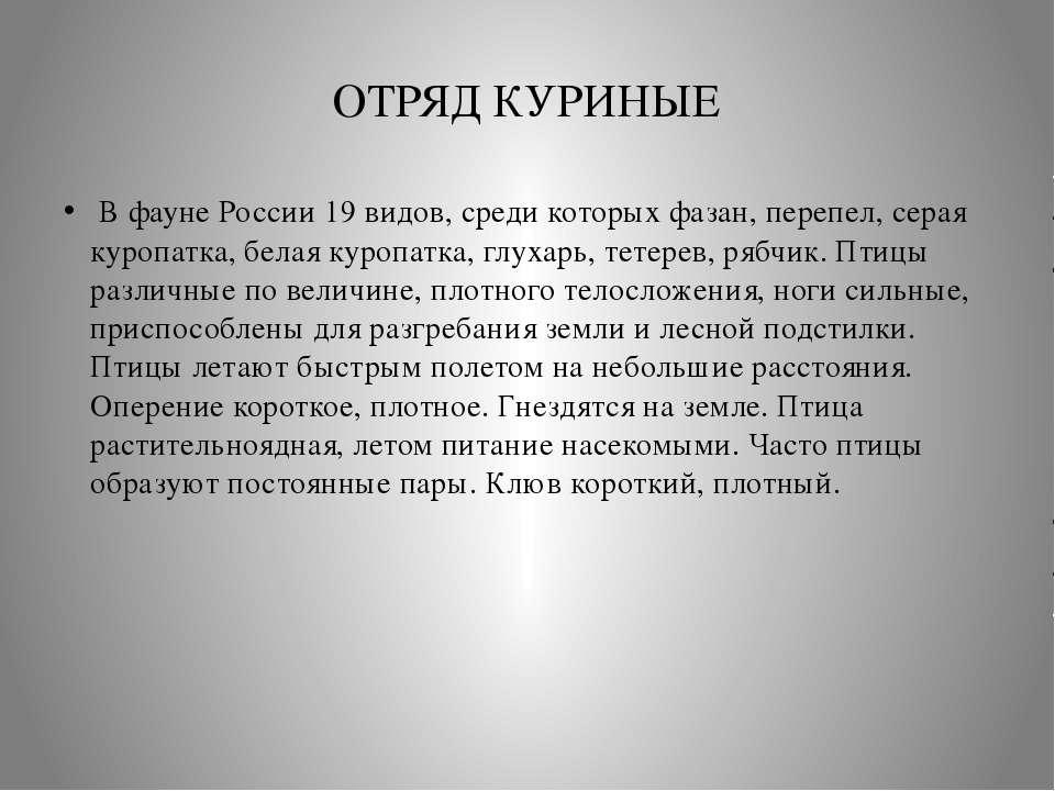 ОТРЯД КУРИНЫЕ В фауне России 19 видов, среди которых фазан, перепел, серая к...