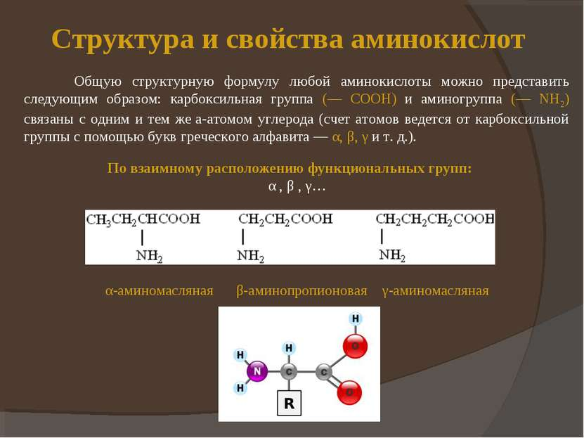 Структура и свойства аминокислот Общую структурную формулу любой аминокислоты...