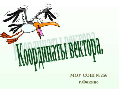 МОУ СОШ №256 г.Фокино