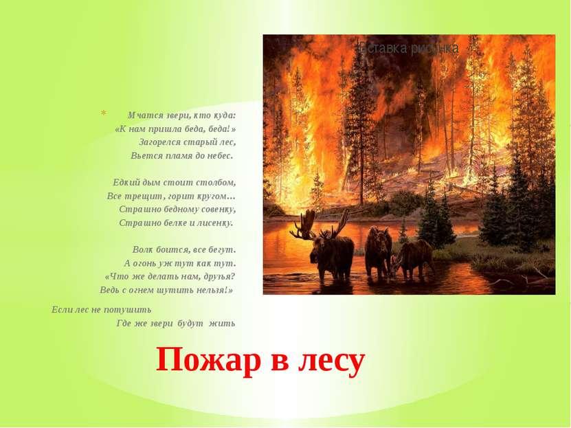 Мчатся звери, кто куда: «К нам пришла беда, беда!» Загорелся старый лес, Вьет...