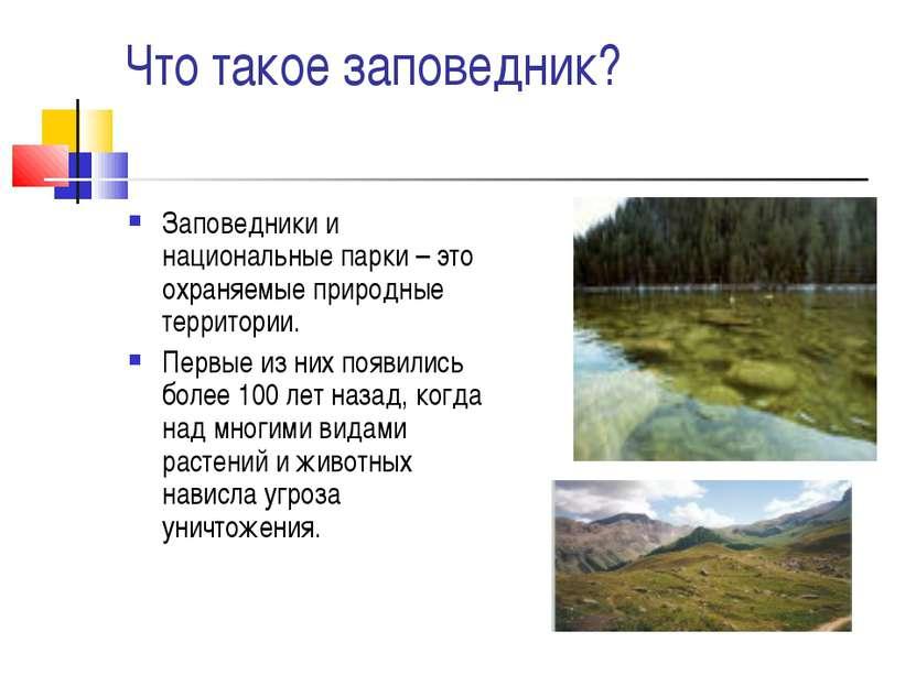 Что такое заповедник? Заповедники и национальные парки – это охраняемые приро...