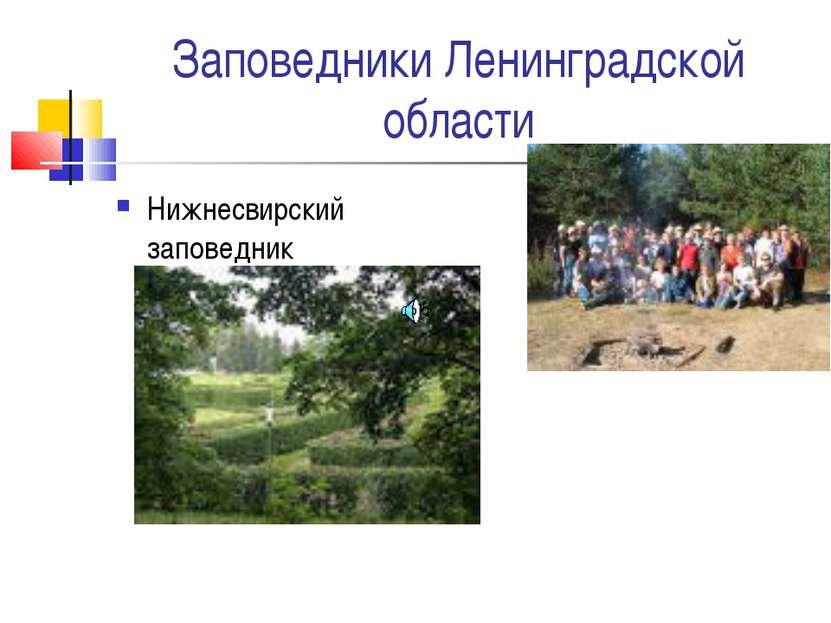 Заповедники Ленинградской области Нижнесвирский заповедник