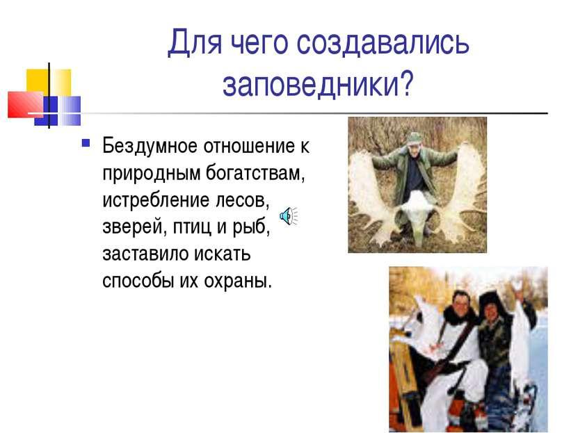 Для чего создавались заповедники? Бездумное отношение к природным богатствам,...