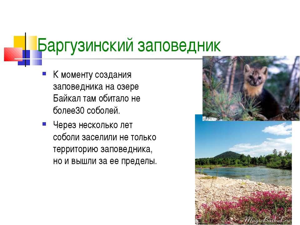 Баргузинский заповедник К моменту создания заповедника на озере Байкал там об...