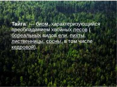 Тайга Тайга —биом, характеризующийся преобладанием хвойныхлесов(бореальны...