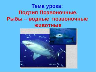 Тема урока: Подтип Позвоночные. Рыбы – водные позвоночные животные