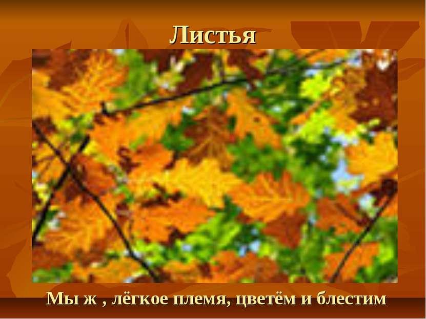 Листья Мы ж , лёгкое племя, цветём и блестим