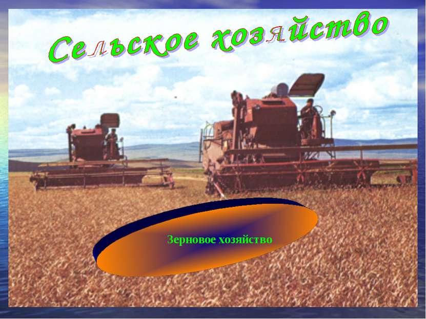Зерновое хозяйство