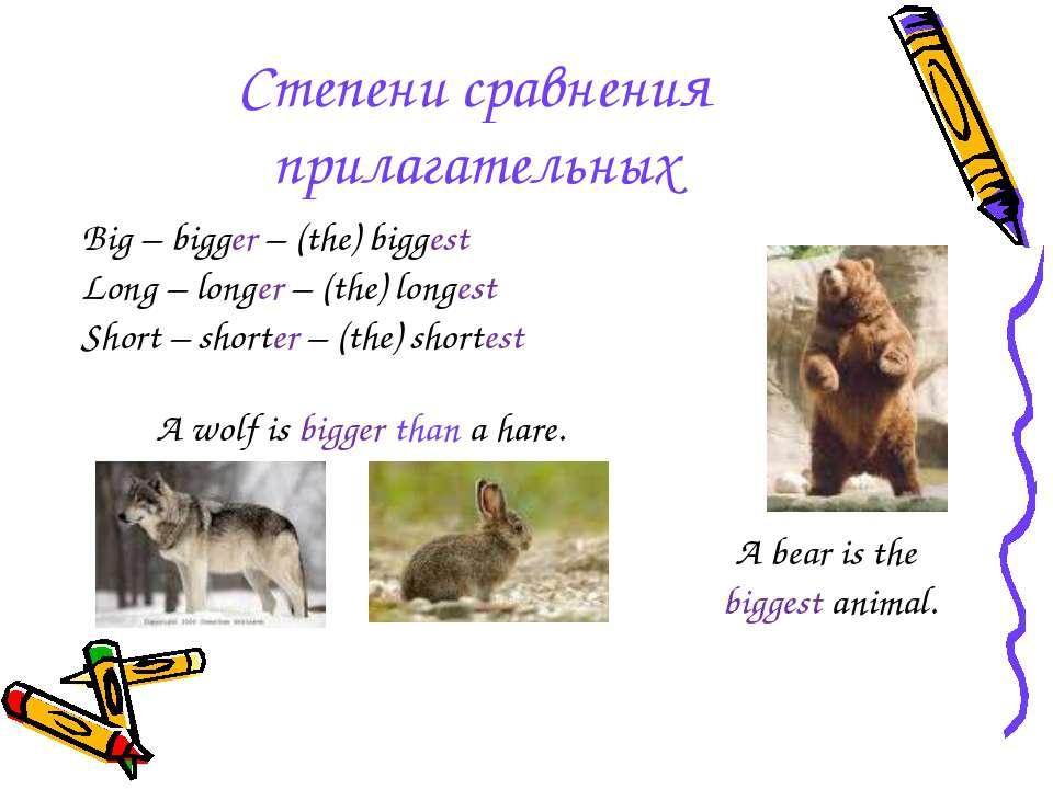 Степени сравнения прилагательных Big – bigger – (the) biggest Long – longer –...