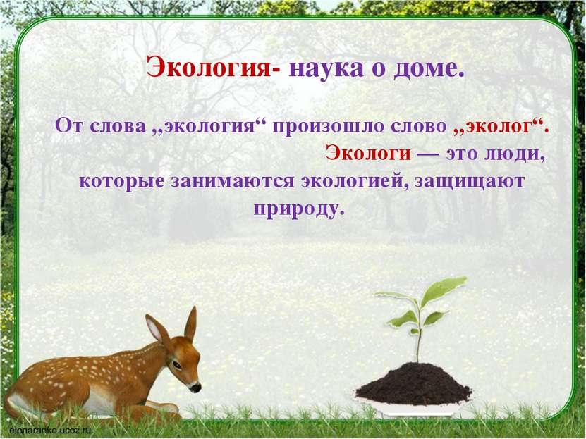 """Экология- наука о доме. Отслова """"экология"""" произошло слово """"эколог"""". Экологи..."""