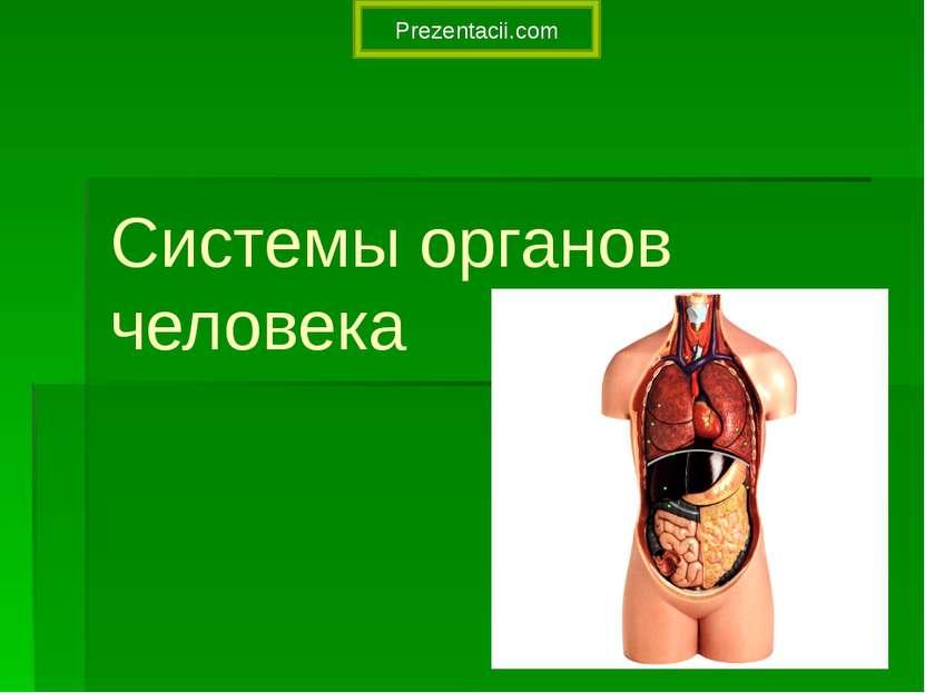 Системы органов человека Prezentacii.com