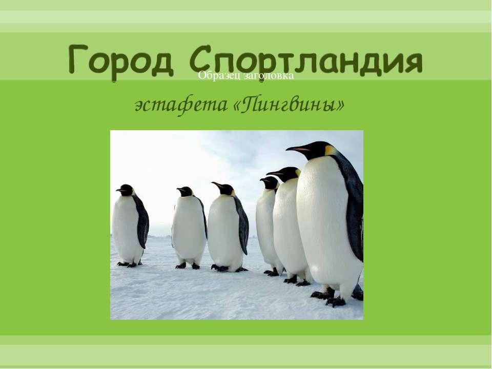 эстафета «Пингвины»