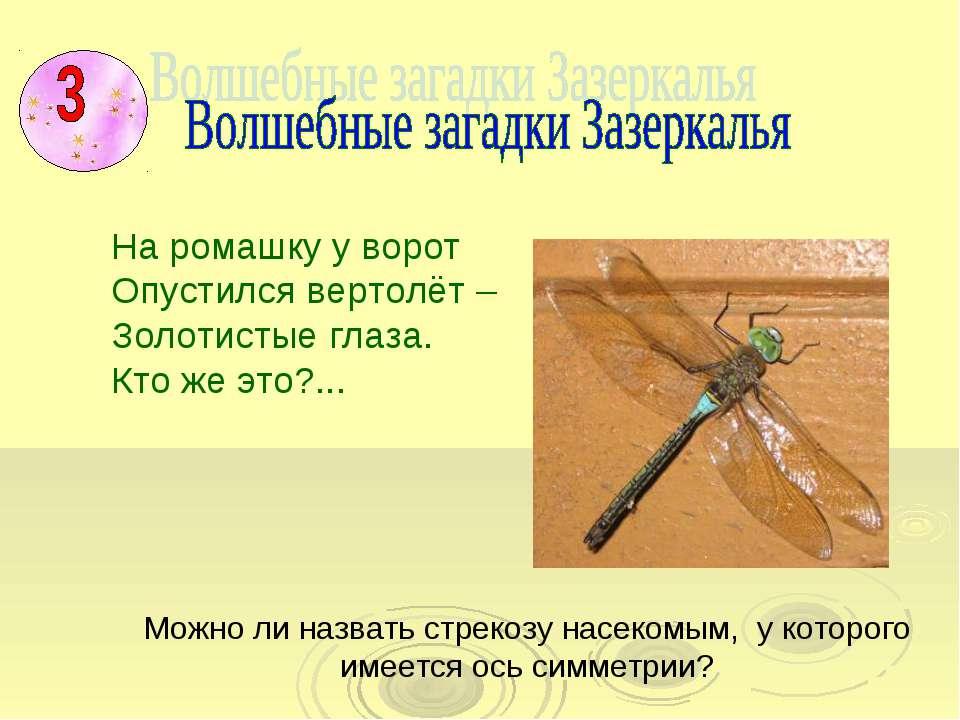 Можно ли назвать стрекозу насекомым, у которого имеется ось симметрии? На ром...