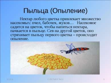 Пыльца (Опыление) Нектар любого цветка привлекает множество насекомых: пчел, ...