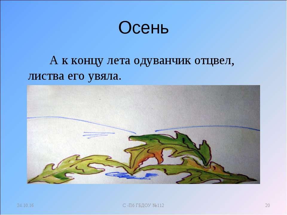 Осень А к концу лета одуванчик отцвел, листва его увяла. * С -Пб ГБДОУ №112 *...