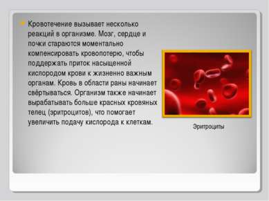 Кровотечение вызывает несколько реакций в организме. Мозг, сердце и почки ста...