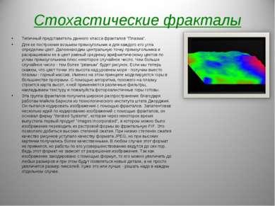 """Стохастические фракталы Типичный представитель данного класса фракталов """"Плаз..."""
