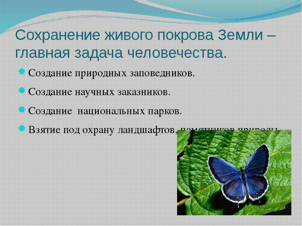 Сохранение живого покрова Земли – главная задача человечества. Создание приро...