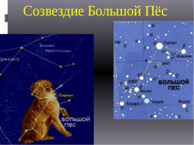 Созвездие Большой Пёс