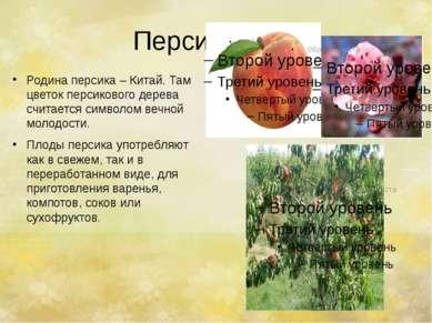Персик. Родина персика – Китай. Там цветок персикового дерева считается симво...