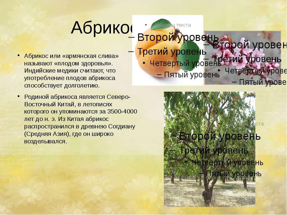 Абрикос. Абрикос или «армянская слива» называют «плодом здоровья». Индийские ...