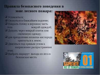 Правила безопасного поведения в зоне лесного пожара: Успокоиться; Окунуться в...