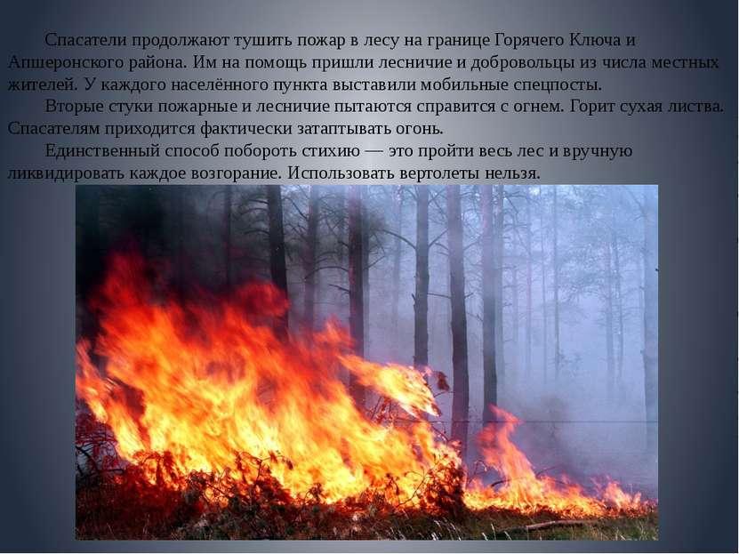 Спасатели продолжают тушить пожар в лесу на границе Горячего Ключа и Апшеронс...