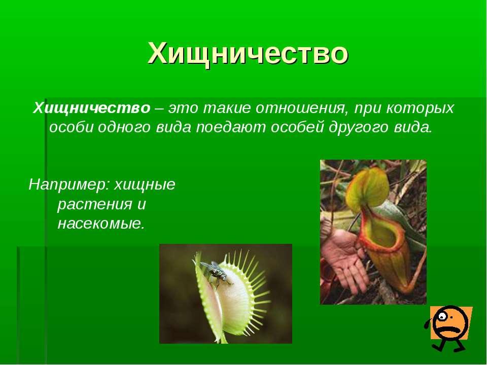 Хищничество Хищничество – это такие отношения, при которых особи одного вида ...