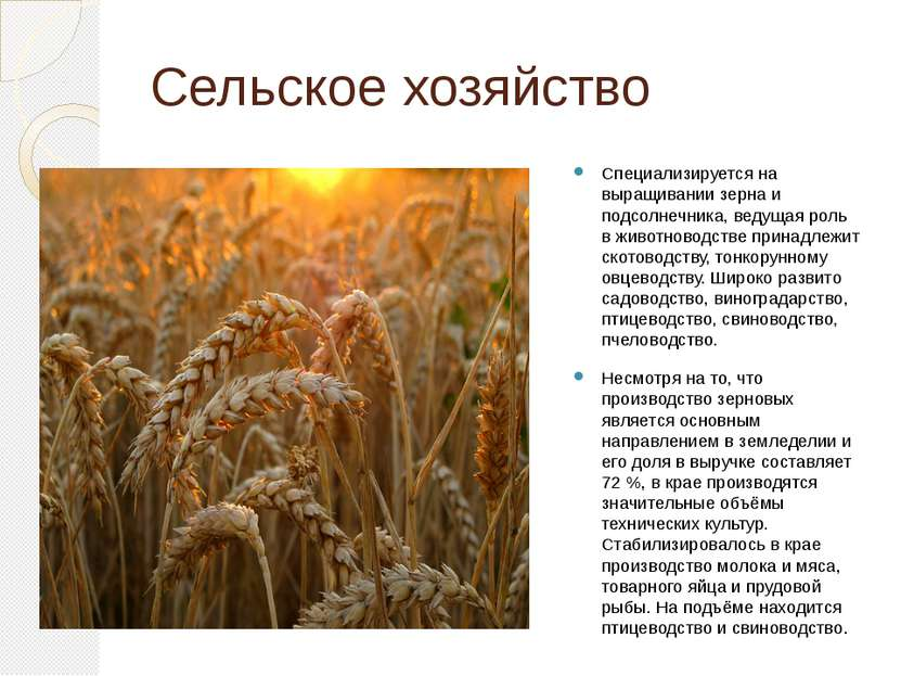 Сельское хозяйство Специализируется на выращивании зерна и подсолнечника, вед...