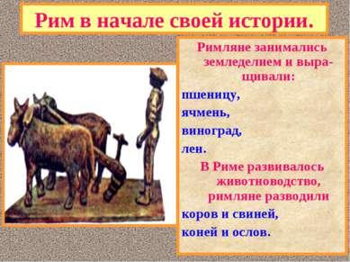 Рим в начале своей истории. Римляне занимались земледелием и выра-щивали: пше...