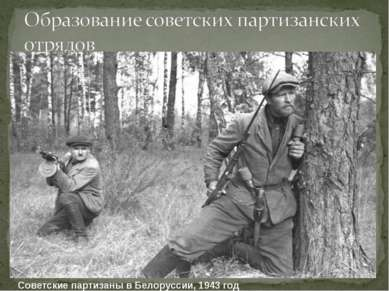 Советские партизаны в Белоруссии, 1943 год
