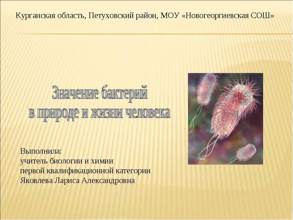 Курганская область, Петуховский район, МОУ «Новогеоргиевская СОШ» Выполнила: ...