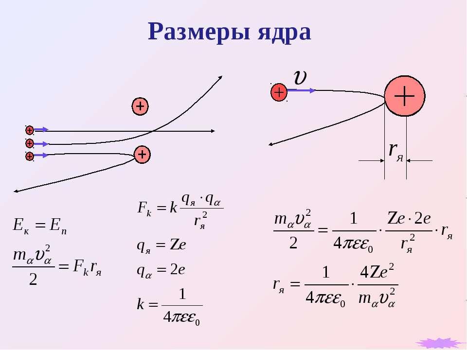 Размеры ядра