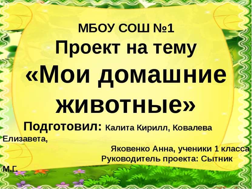 МБОУ СОШ №1 Проект на тему «Мои домашние животные» Подготовил: Калита Кирилл,...