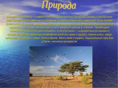 Большая часть страны — каменистые и песчаные пустыни Западной Сахары и полупу...
