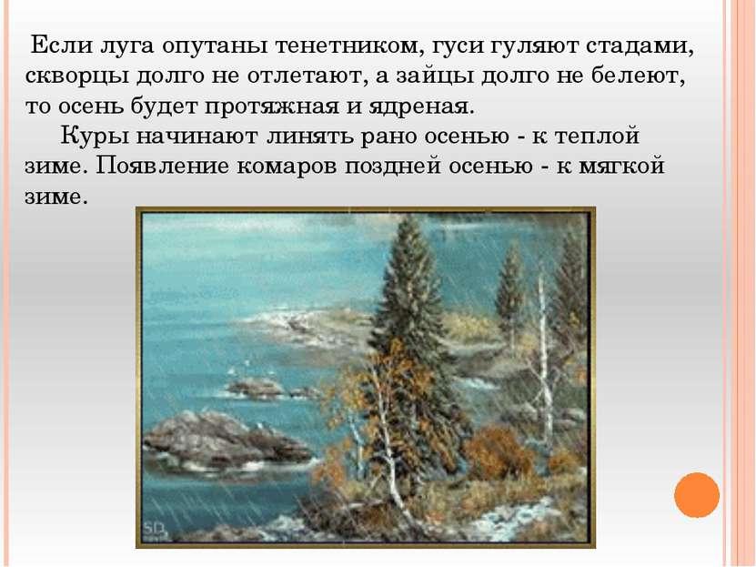 Если луга опутаны тенетником, гуси гуляют стадами, скворцы долго не отлетают,...