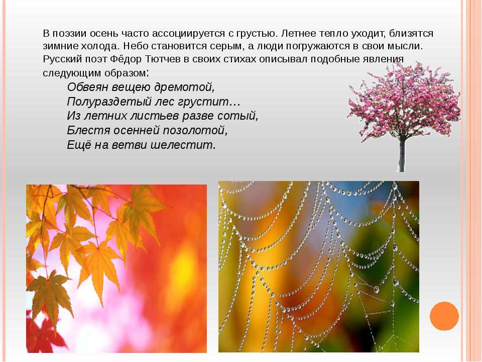 В поэзии осень часто ассоциируется с грустью. Летнее тепло уходит, близятся з...