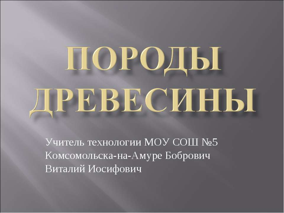 Учитель технологии МОУ СОШ №5 Комсомольска-на-Амуре Бобрович Виталий Иосифович