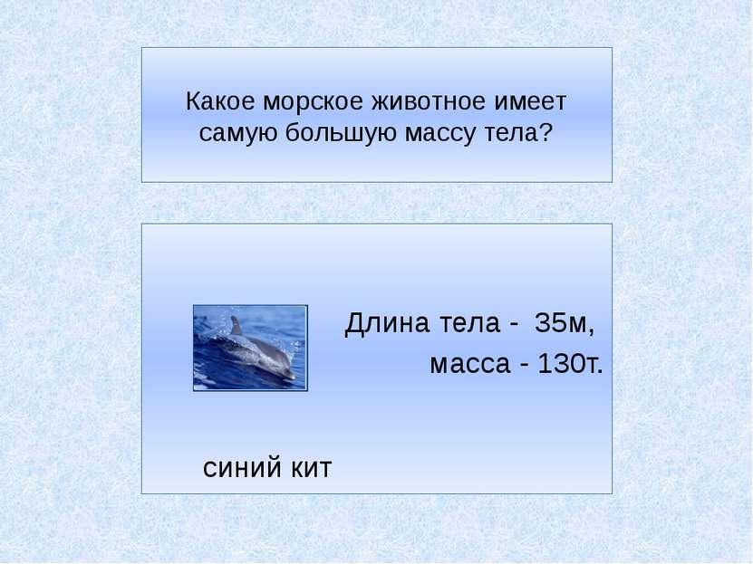 Какое морское животное имеет самую большую массу тела? Длина тела - 35м, масс...