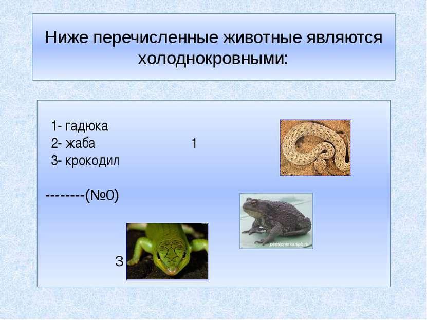 Ниже перечисленные животные являются холоднокровными: 1- гадюка 2- жаба 1 3- ...