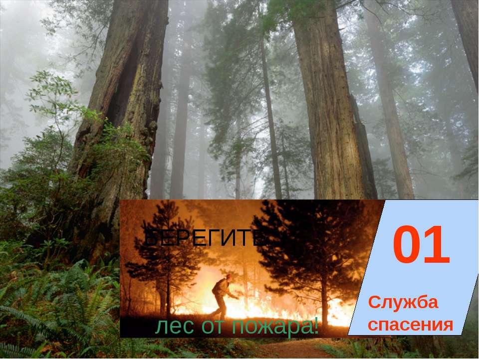 01 Служба спасения БЕРЕГИТЕ лес от пожара!