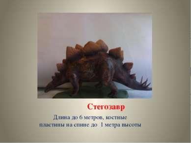 Стегозавр Длина до 6 метров, костные пластины на спине до 1 метра высоты
