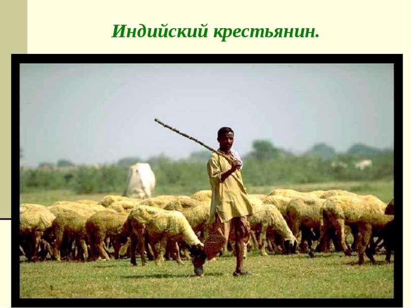 Индийский крестьянин.