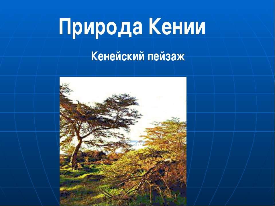 Кенейский пейзаж Природа Кении