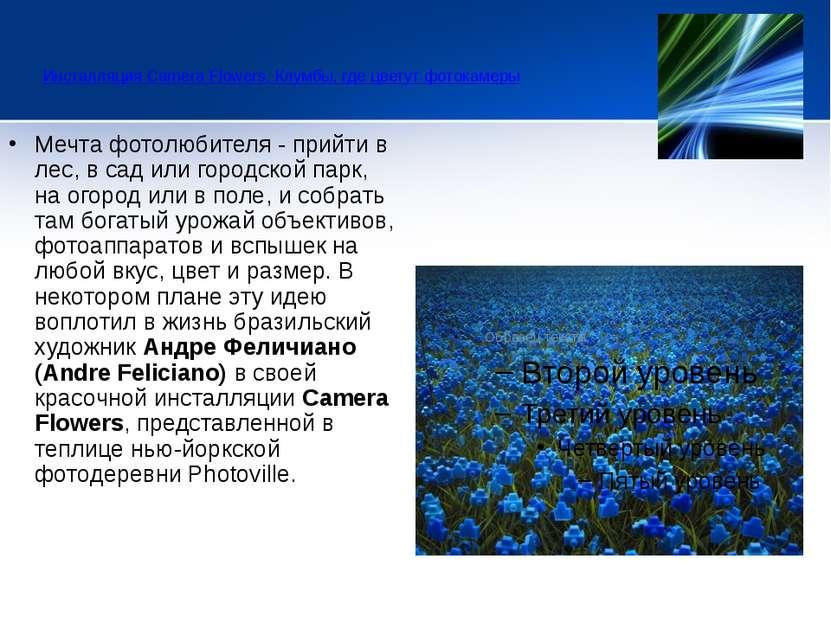 Инсталляция Camera Flowers. Клумбы, где цветут фотокамеры  Мечта фотолюбит...