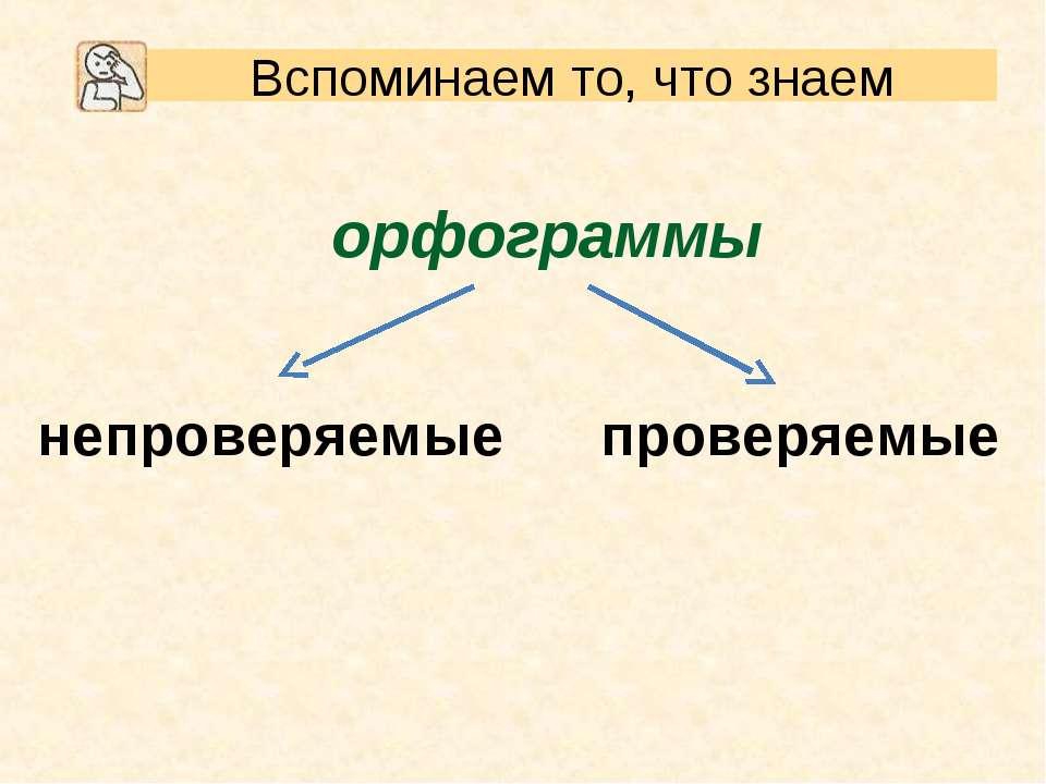 орфограммы проверяемые непроверяемые