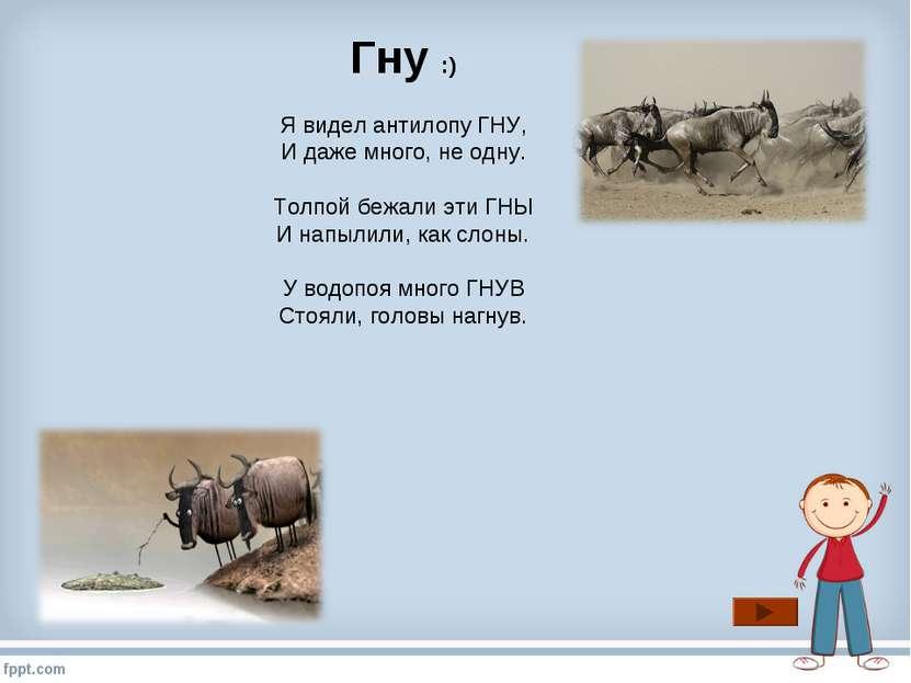 Гну :) Я видел антилопу ГНУ, И даже много, не одну. Толпой бежали эти ГНЫ И н...